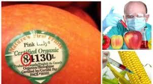 Nhận biết hoa quả nhập khẩu biến đổi gen bằng mã số